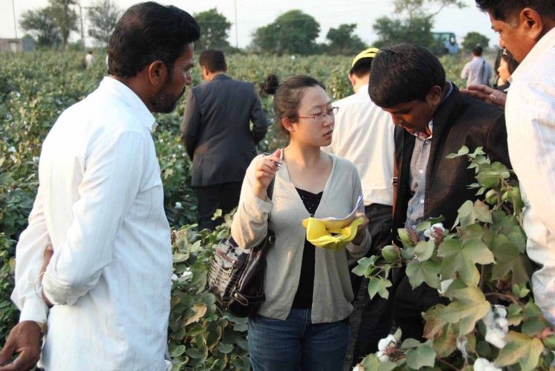 Chinese delegate taking more information of our cotton