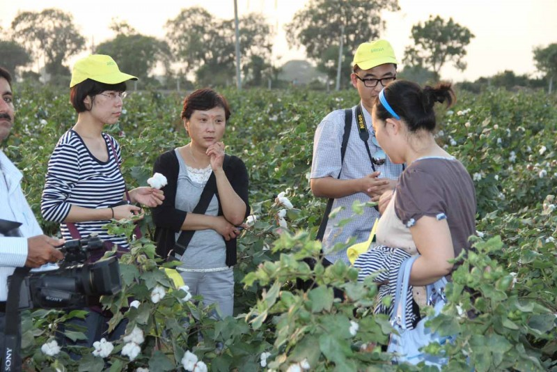Chinese delegate taking more information of our raw cotton